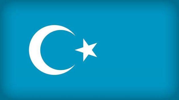 Uyghur Bayraqi